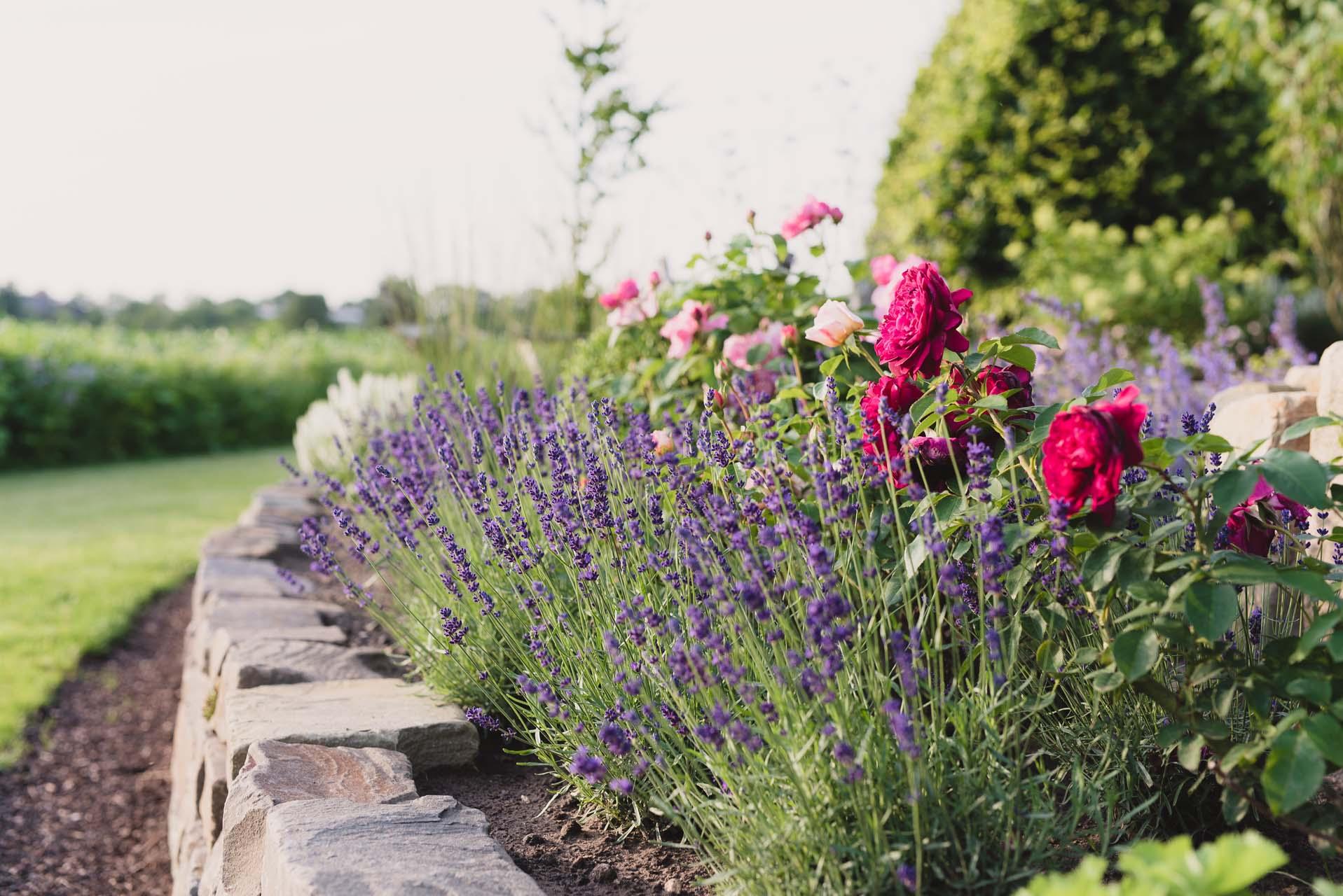 Gartengestaltung_Bild_4