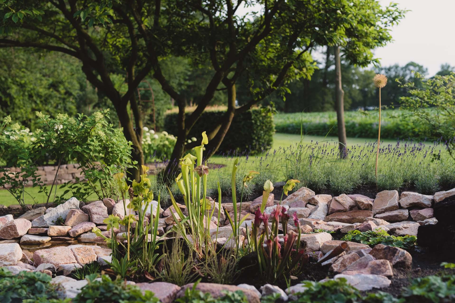 Gartengestaltung_Bild_5